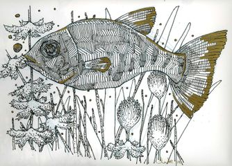 'Pupfish and Foliage'. 2015. Black and Gold ink on Paper. A4.