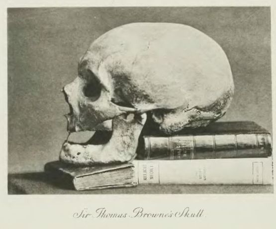 Browne's skull on books, 17th century, sourced Project Gutenberg