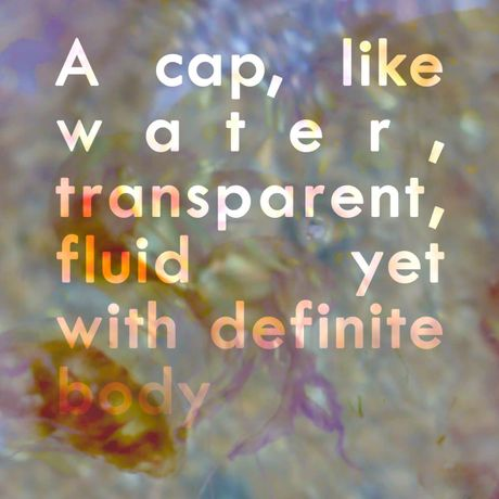 A cap, like water, transparent, fluid yet with definite body, Bryony Gillard