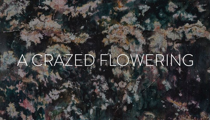 A Crazed Flowering: Image 0