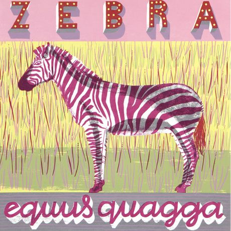 Zebra | Alice Pattullo