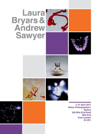 A Selection of Works by Laura Bryars and Andrew Sawyer