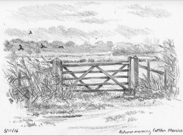 'A Sketch a Day' by Kate Batchelor: Image 3