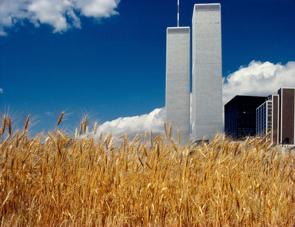 Agnes Denes, Wheatfield – A Confrontation: Battery Park Landfill, Downtown Manhattan – Blue Sky With World Trade Center, 1982, © Agnes Denes, Courtesy of Leslie Tonkonow Artworks + Projects