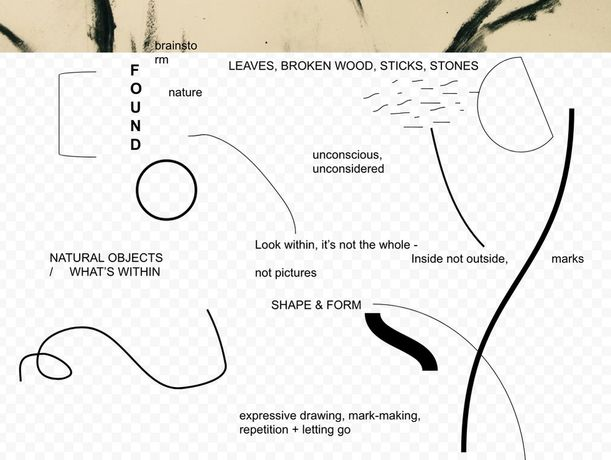 Abstract Nature: Line, form and texture drawings inspired by found natural objects: Image 0