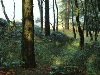 Pine and Bracken  Oil on Canvas 30 x 40 inches