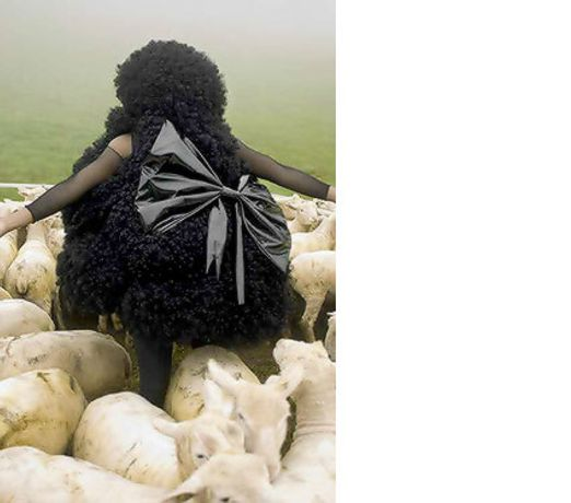 Africa Art Now:  Contemporary Art from Africa  and the African Diaspora: Image 0