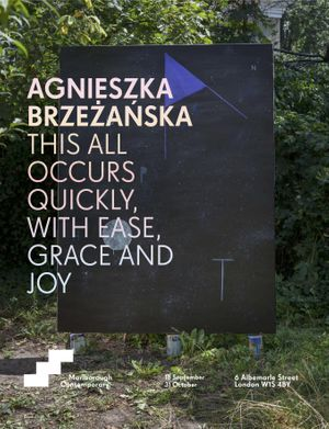 Agnieszka Brzeżańska: This all occurs quickly, with ease, grace and joy