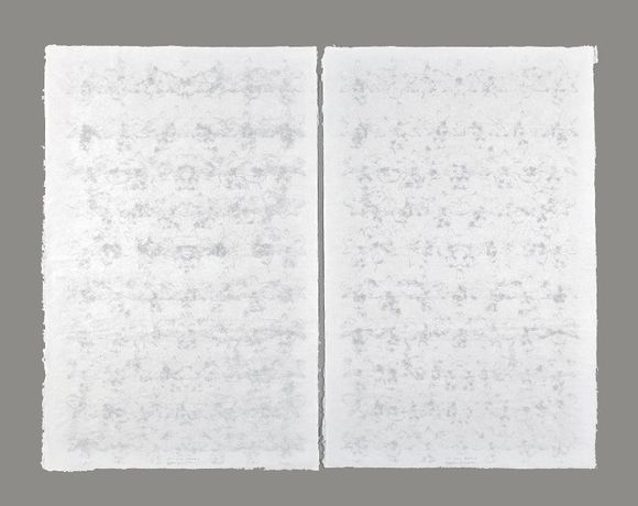 Tayfun Erdoğmuş Orchis 2011 Water paintings. Handmade paper and cotton fiber 68 x 43.5 cm. each page