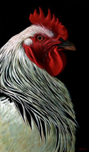 'Charlie the Rooster III' oil on canvas, 100 × 60 cm