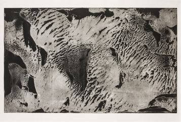 Shoals 2014, Steel Etching. 1070 X 750mm, 2014