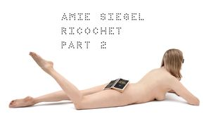 Amie Siegel: Book Launch and Talk