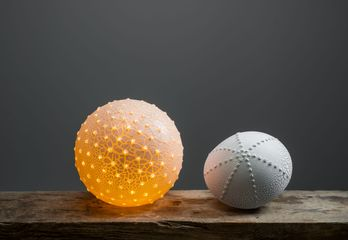 Pollen and Urchin Porcelain Lamp