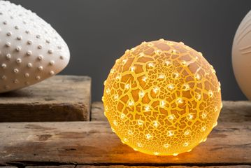 Amy Cooper, Lesser Spotted Fat Pollen Porcelain Lamp