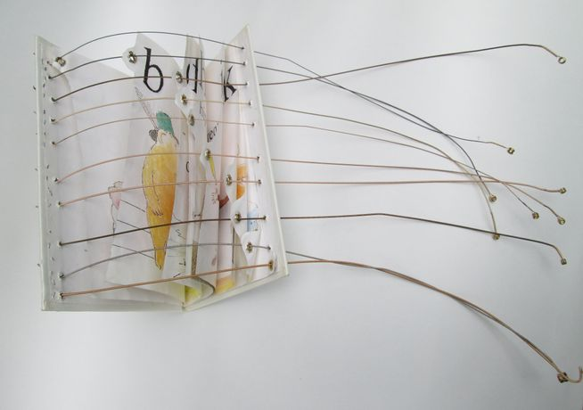 Amy Sterly: The Sound of Reading: Image 0