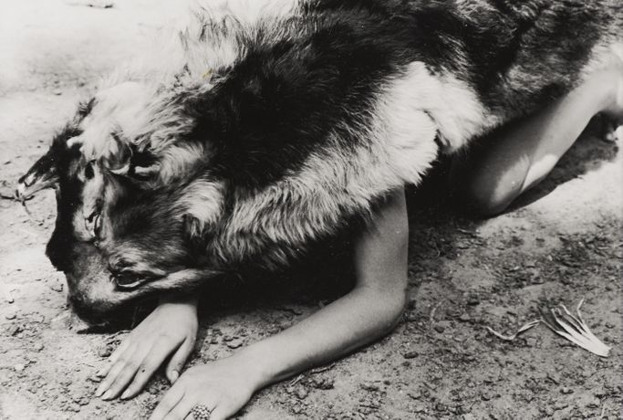 Ana Mendieta, Dog, 1974. Copyright The Estate of Ana Mendieta Collection, LLC; Courtesy The Estate of Ana Mendieta Collection, Galerie Lelong, New York and Alison Jacques Gallery, London