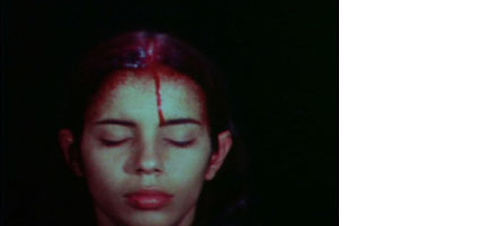 Ana Mendieta: Silueta and Silence: Image 0