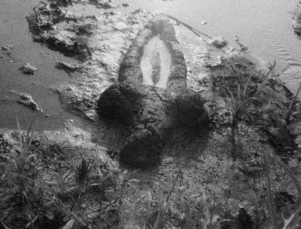 Ana Mendieta, Birth (Gunpowder Works), 1981 (film still)
