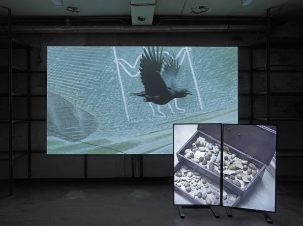 Still from the opposite The Opposite of Time, 2017, by Andy Holden, three screen video with animated crow leading a social history of nest collecting. Andy Holden & Peter Holden, Natural Selection, 2017. An Artangel commission. Photo by Marcus J. Leith