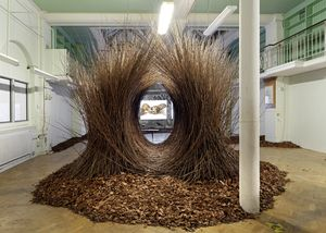 Untitled (Bower), 2017 by Andy Holden, a recreation of a Bowerbird's bower, with a view of the film A Natural History of Nest Building, Andy Holden & Peter Holden, 2017, through it. Andy Holden & Peter Holden, Natural Selection, 2017. An Artangel commission. Photo by Marcus J. Leith