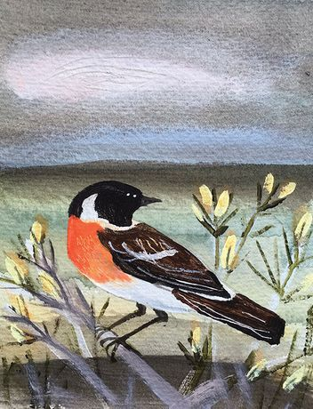Stonechat. Mixed media on watercolour paper. Angela Harding
