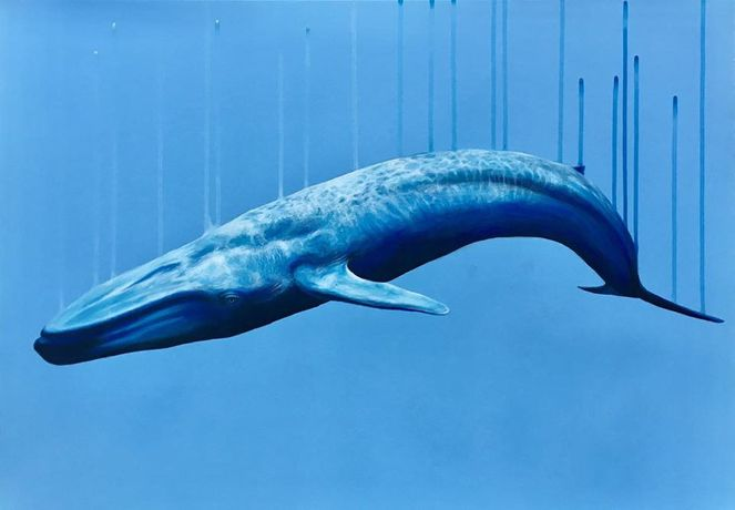 Louise McNaught, Blue Whale