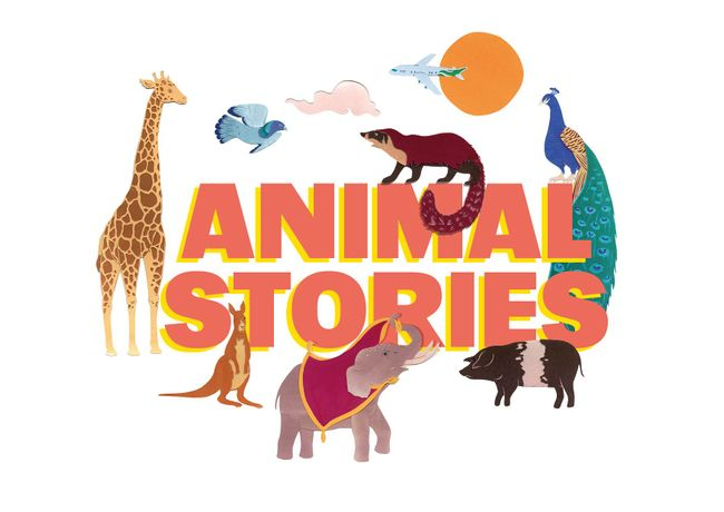 Animal Stories - discover an untold tale of London Borough of Hounslow