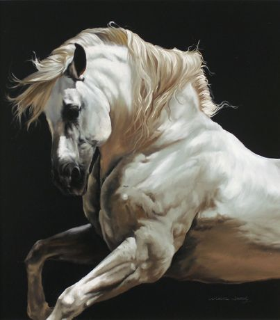 'Andalusian Stallion' by Natalie Stutely