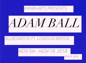 Annin Arts Presents Adam Ball