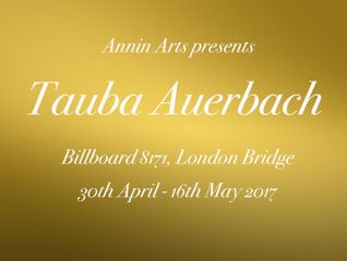 Annin Arts presents Tauba Auerbach