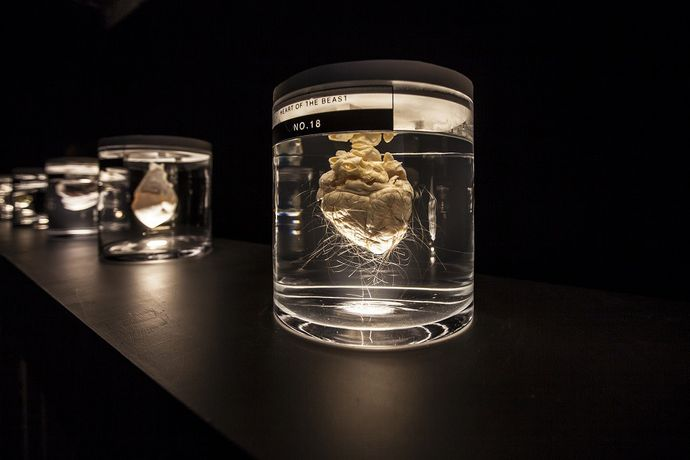 The Art of Deception by Isaac Monté.  Can organs be objects of design? Will humans be able to manipulate organs for aesthetic purposes? Humans use deception to achieve perfection in society, art and science. Reacting to this through art, the artist has taken discarded pig hearts and transformed them into elegant vessels for new life by decellularizing and re-populating them with various techniques, into aesthetically improved hearts for humans. Credits by Hanneke Wetzer