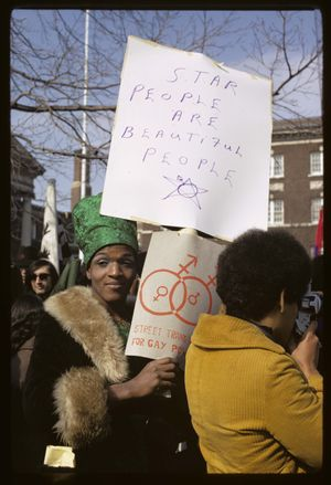 Diana Davies, Gay Rights Demonstration, Albany, NY, 1971, 1971, Digital print, 14 x 11 inches, Photo by Diana Davies/© The New York Public Library/Art Resource, NY