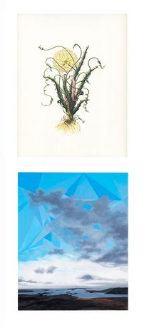 Art First Projects: Helena Goldwater / Rebecca Partridge: Image 0