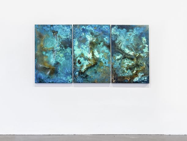 Shelley Anderson 'A GORSE BUSH IN THE EYE + MUSSELS FOR LUNCH' Hand beaten bronze panel + chemical patina, 90 x 120 x 3 cm