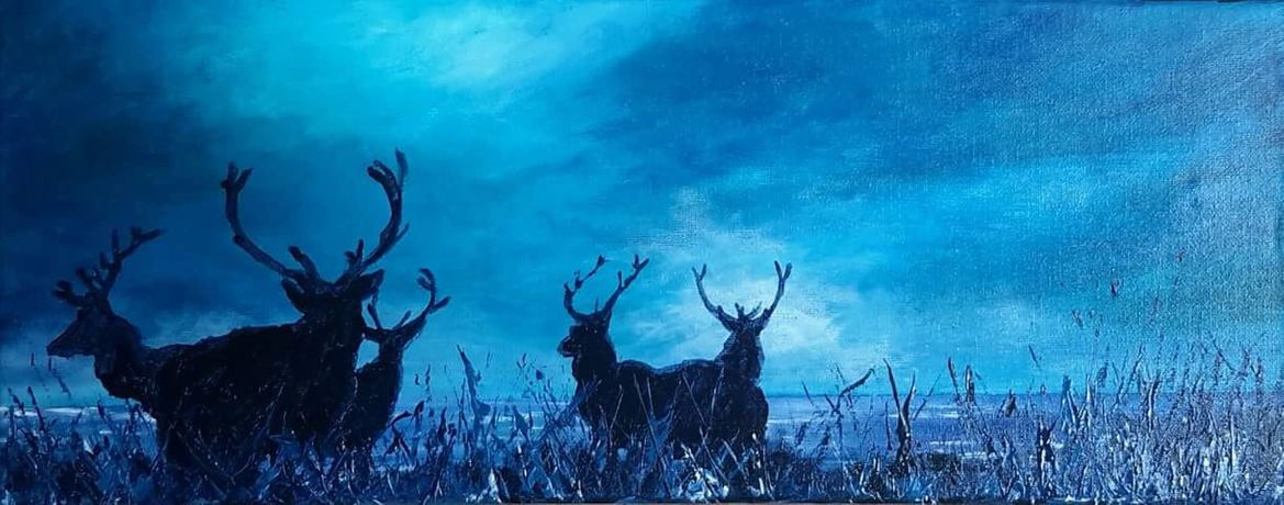 Stag Party by Ruth Scott