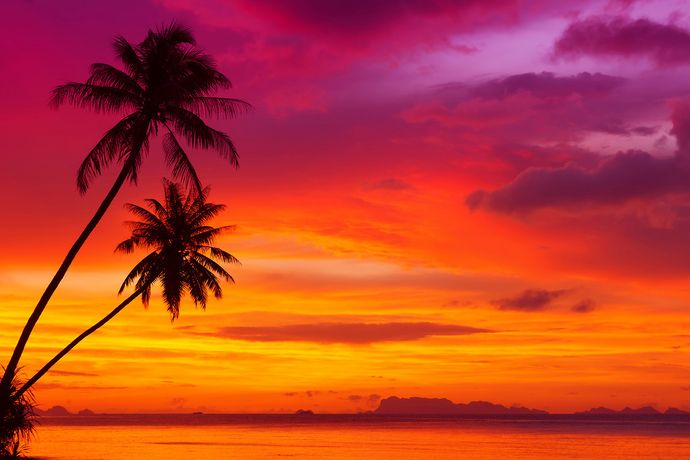 13 June Theme: Tropical Sunset