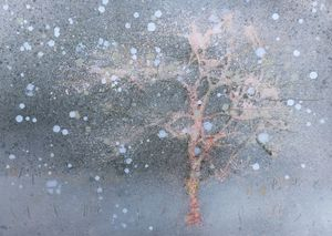 Featured Work: Sapling in Snow