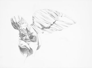 Peace, 2017, Graphite on paper, 24 x 36 inches by Constance Edwards Scopelitis (Courtesy: Long-Sharp Gallery)