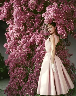 Audrey Hepburn: Beyond the Screen