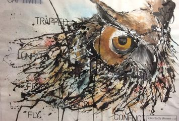 Owl by Charlotte Brown (Yr 13)
