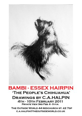 BAMBI - ESSEX HAIRPIN  'The People's Chihuahua': Image 0