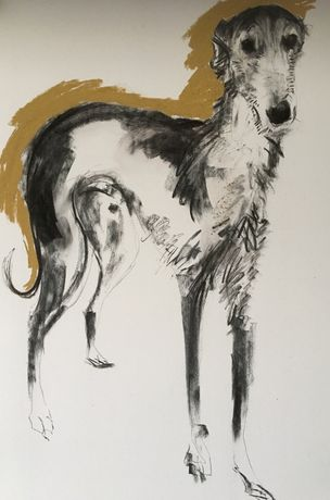 Lurcher; Sally Muir