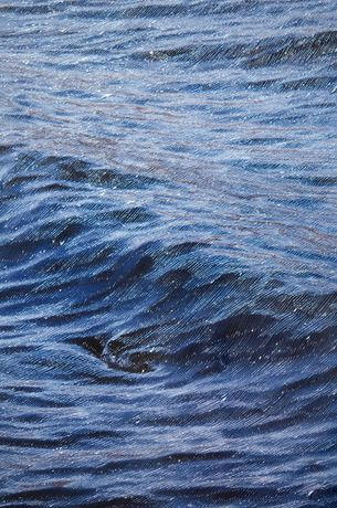 The Same River (Celilo) by Ben Buswell (detail), 2015