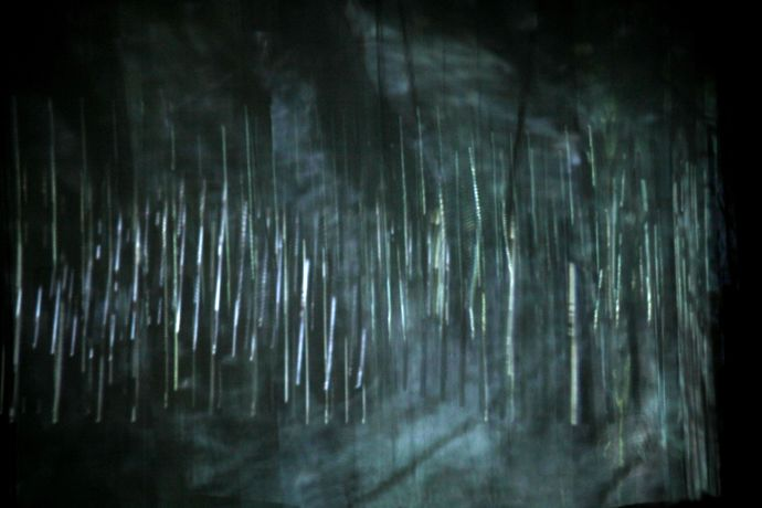 beyond: a video and sound performance by Ursula Scherrer with MV Carbon and Shelley Hirsch: Image 0