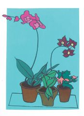 Turquoise Orchid, screenprint, edition of 3
