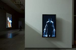 Bill Viola ? Installations/Screenings