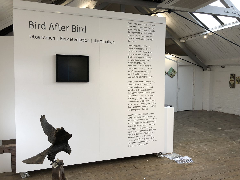 Bird after Bird - Exhibition at Gallery Steel Rooms in Brigg