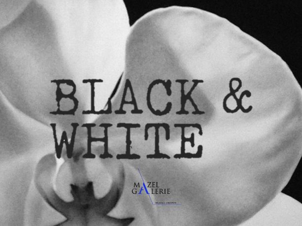 Black and White: Image 0