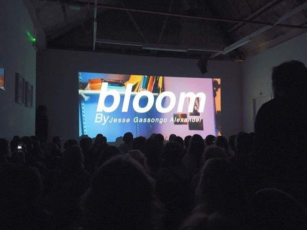 Audience at the Film screening of BLOOM at Copenhagen Pix Film Festival, November 2016