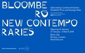 Bloomberg New Contemporaries 2017